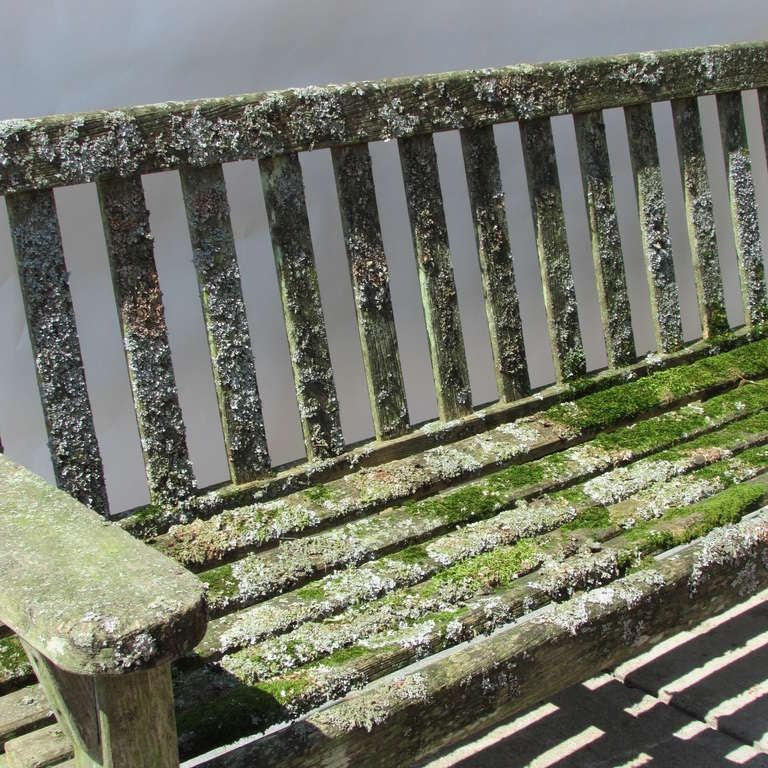 Teak Garden Bench With Moss & Lichen For Sale 1