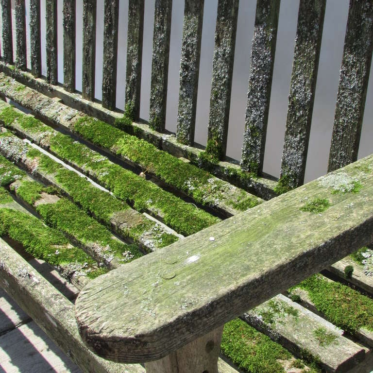 Teak Garden Bench With Moss And Lichen For Sale At 1stdibs