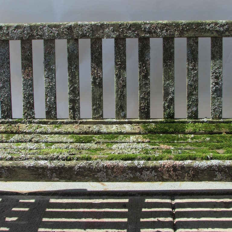 Teak Garden Bench With Moss & Lichen For Sale 3