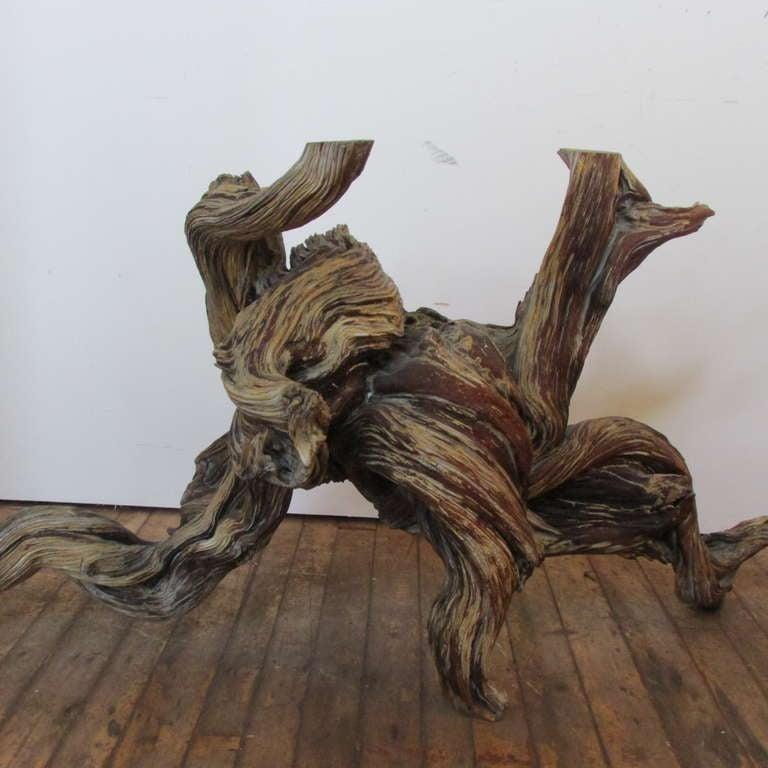 Driftwood Redwood Burl Root Sculpture / Table Base 3