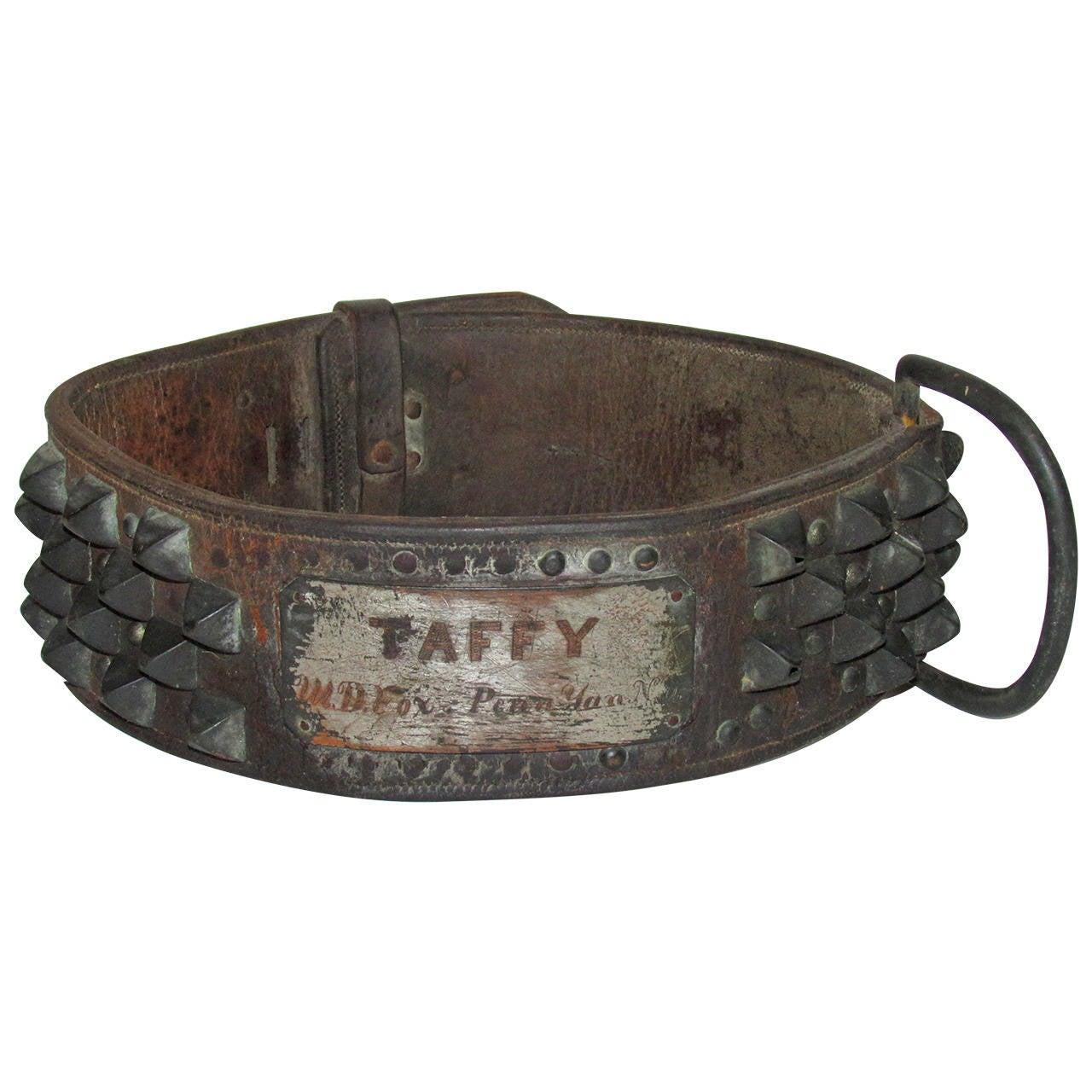 Dog Door Lock Collar Geschiedenis Van De Hondenhalsbanden