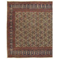 Antique Indian Carpet, Handmade Oriental Rug, Tan, Blue, Cream, Red, Allover Sq.