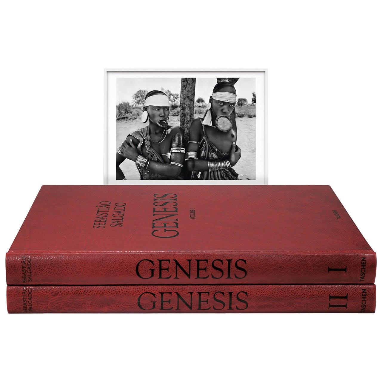 """Sebastião Salgado """"GENESIS"""" Art Edition For Sale"""