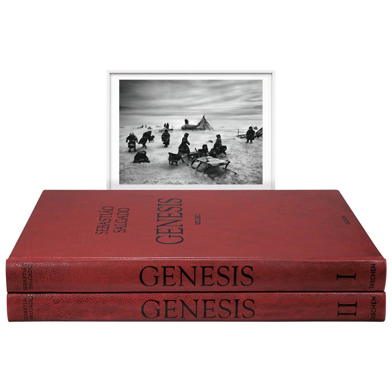 """Sebastião Salgado """"Genesis"""", Art Edition B"""