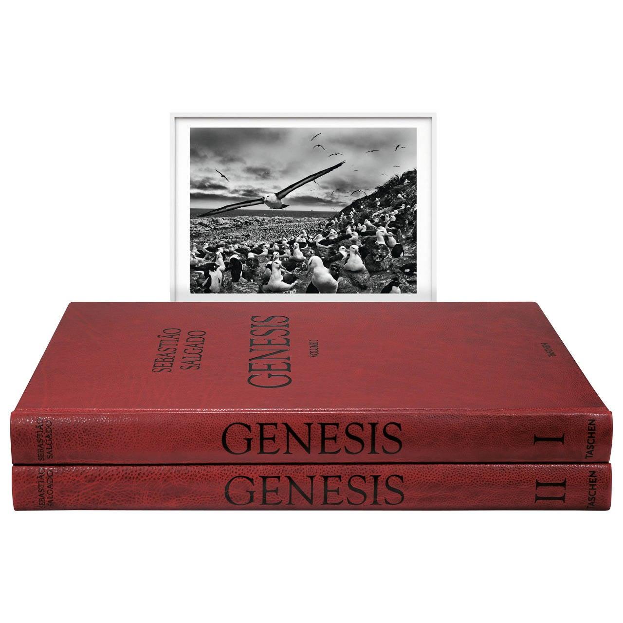 Sebastião Salgado: Genesis, Art Edition C For Sale