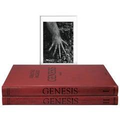 Sebastião Salgado, Genesis, Art Edition D