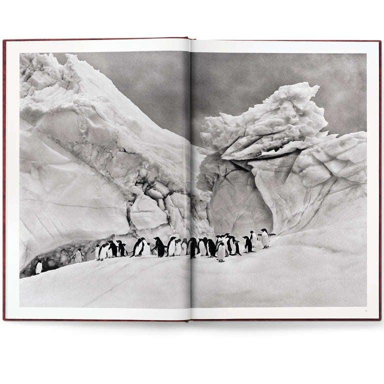Sebastião Salgado: Genesis, Art Edition C For Sale 4
