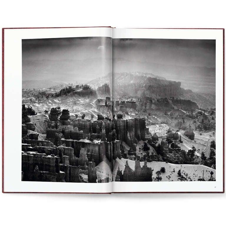 Sebastião Salgado: Genesis, Art Edition C For Sale 5