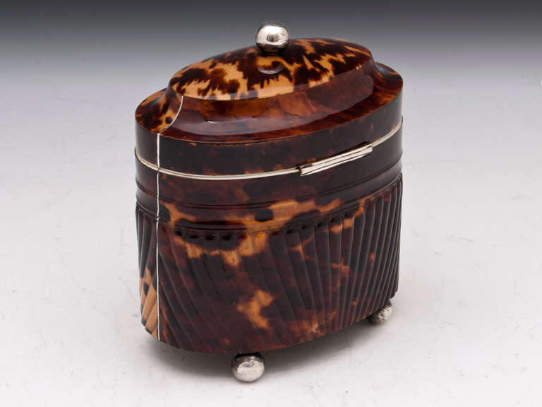 British Antique Pressed Tortoiseshell Oval Tea Caddy For Sale