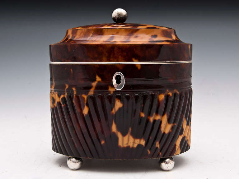 Antique Pressed Tortoiseshell Oval Tea Caddy In Excellent Condition For Sale In Northampton, United Kingdom