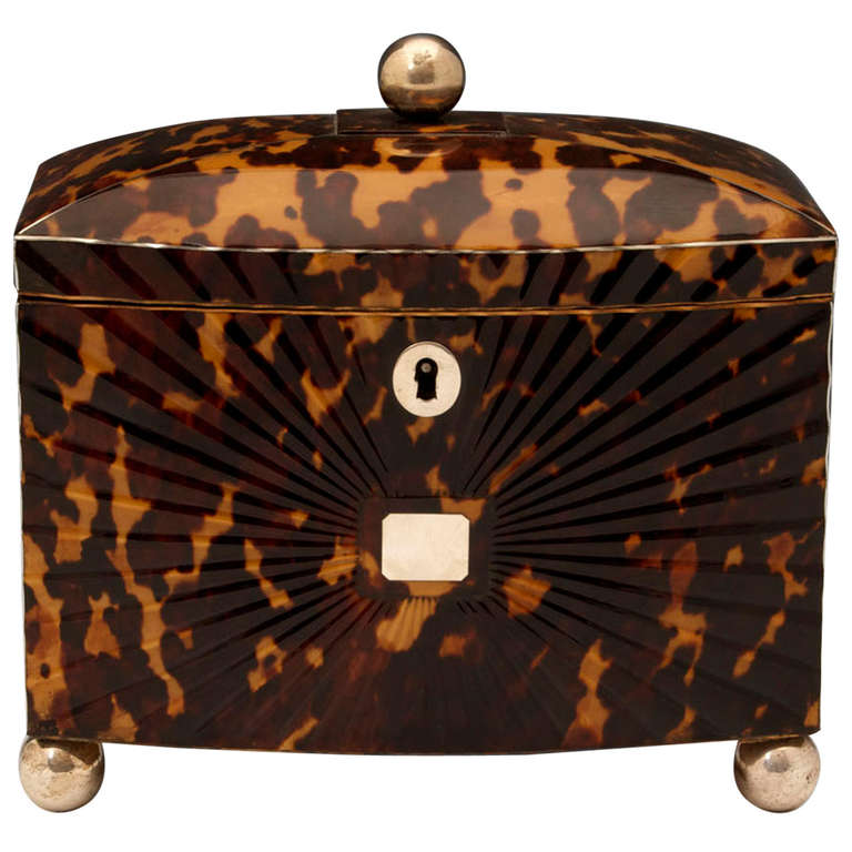 Regency Starburst Tortoiseshell Tea Caddy For Sale