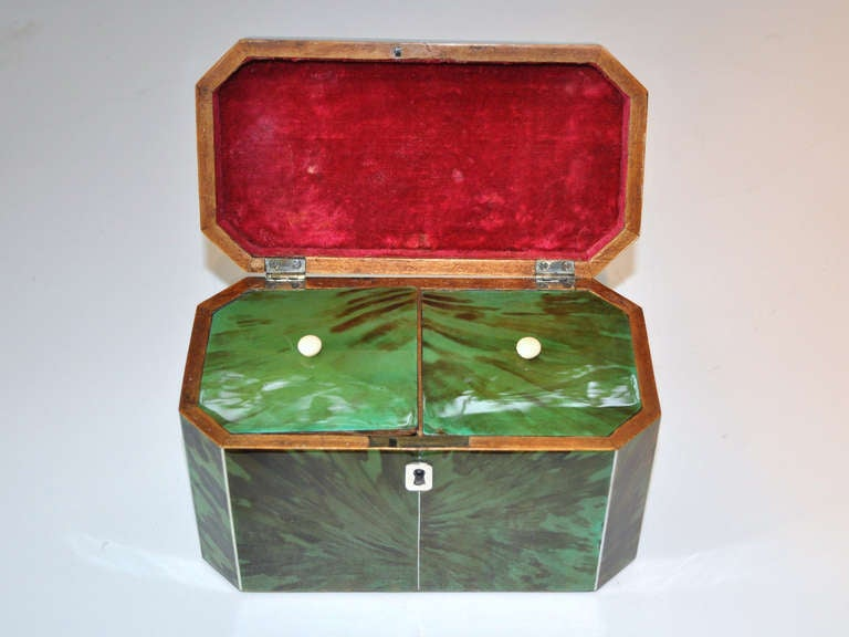 19th Century Green Tortoiseshell Tea Caddy For Sale