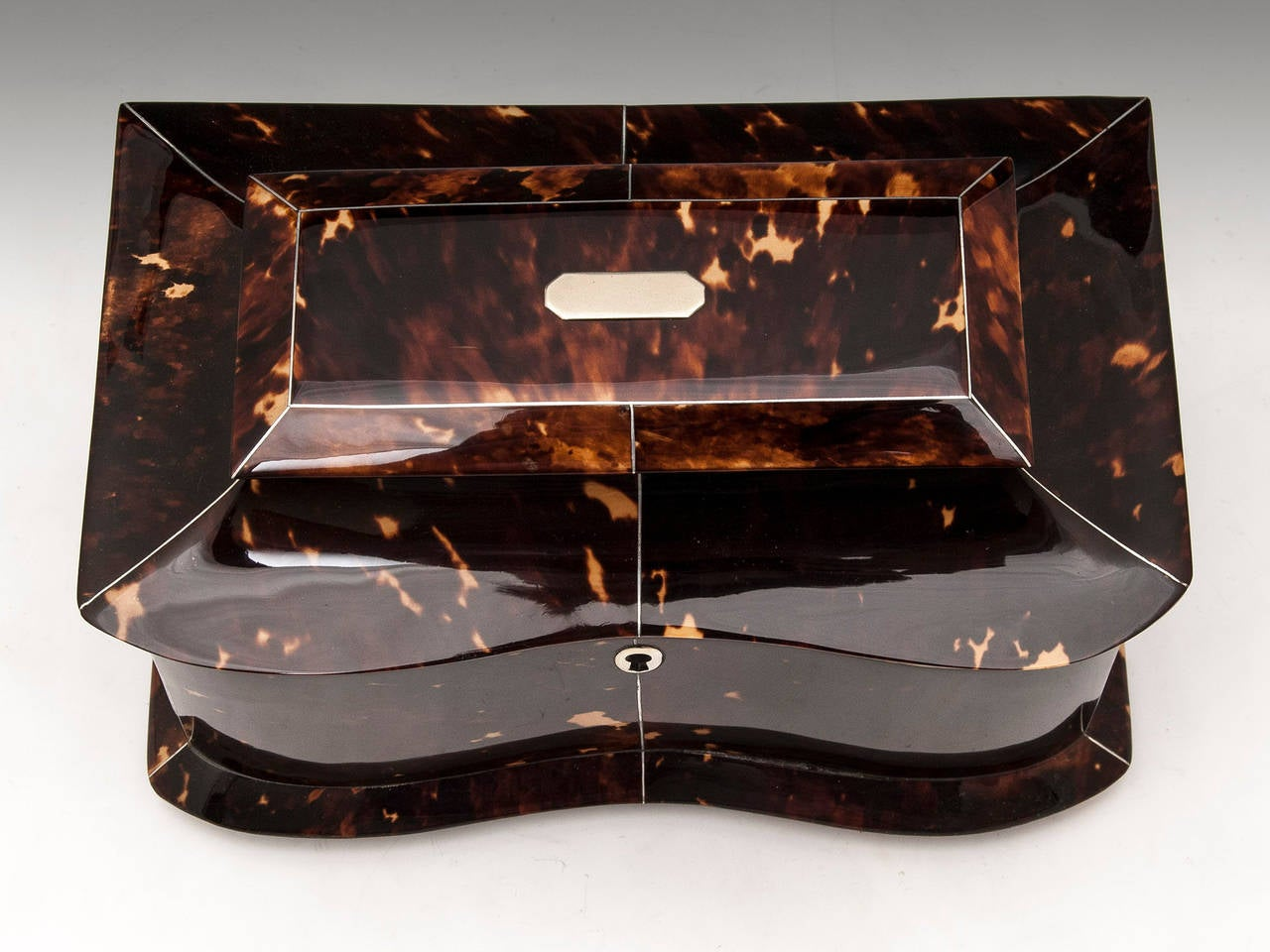 Regency Tortoiseshell Tea Caddy In Good Condition For Sale In Northampton, United Kingdom