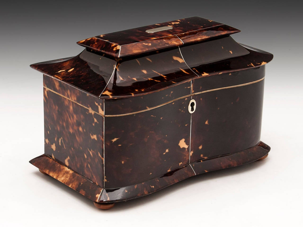 19th Century Regency Tortoiseshell Tea Caddy For Sale
