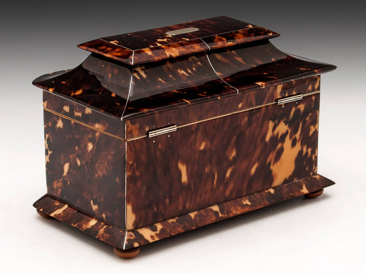 Bone Regency Tortoiseshell Tea Caddy For Sale