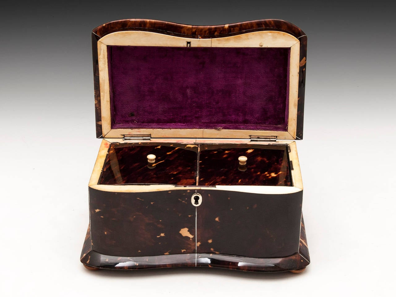 Regency Tortoiseshell Tea Caddy For Sale 1