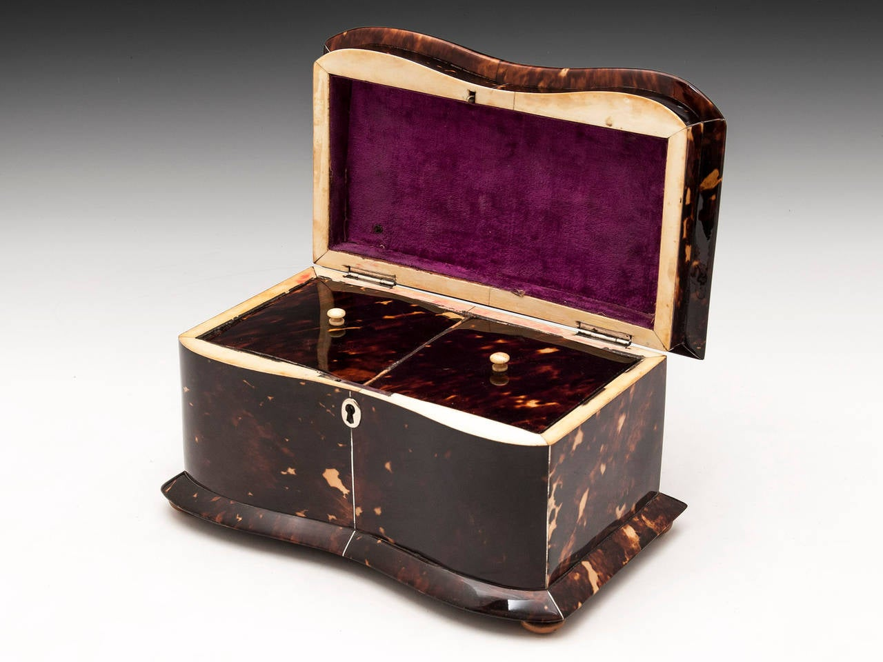 Regency Tortoiseshell Tea Caddy For Sale 2