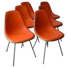 Herman Miller H Base Dining Chairs