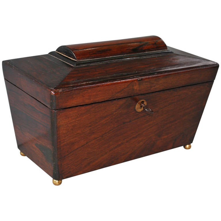19th Century English Tea Caddy