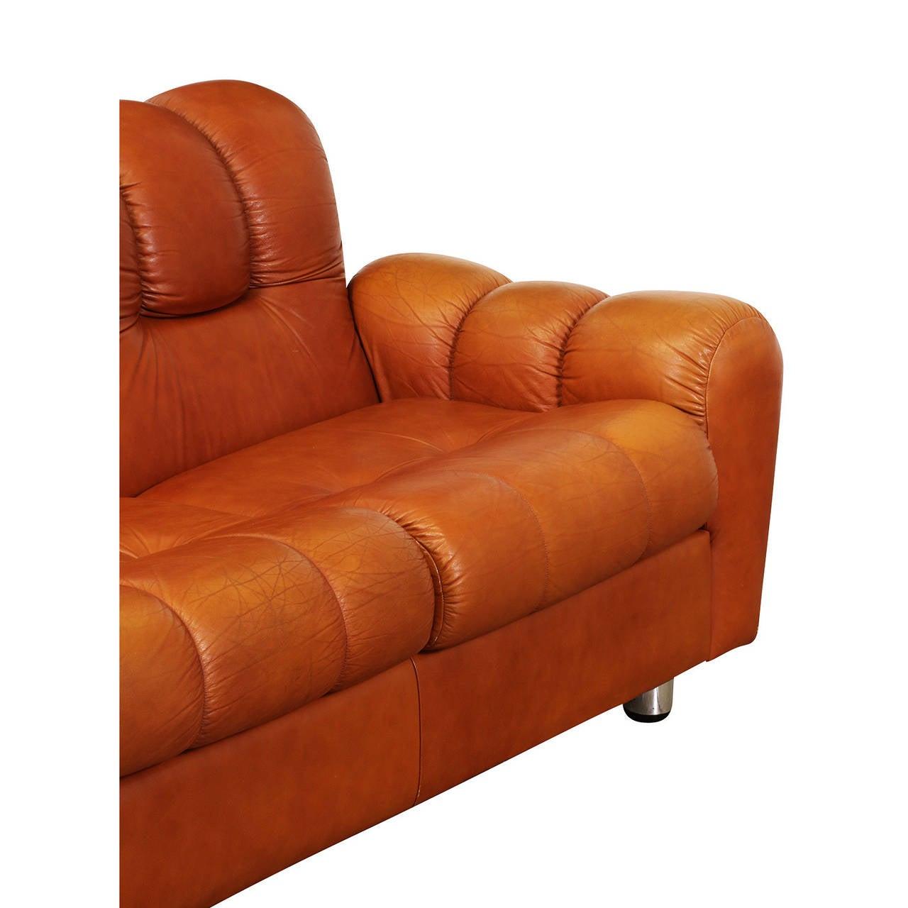 elegant image of leather tufted sofa