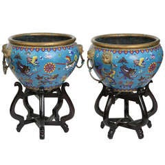 Pair Large  Cloisonné Jardinieres/ Planter Pots on Stands