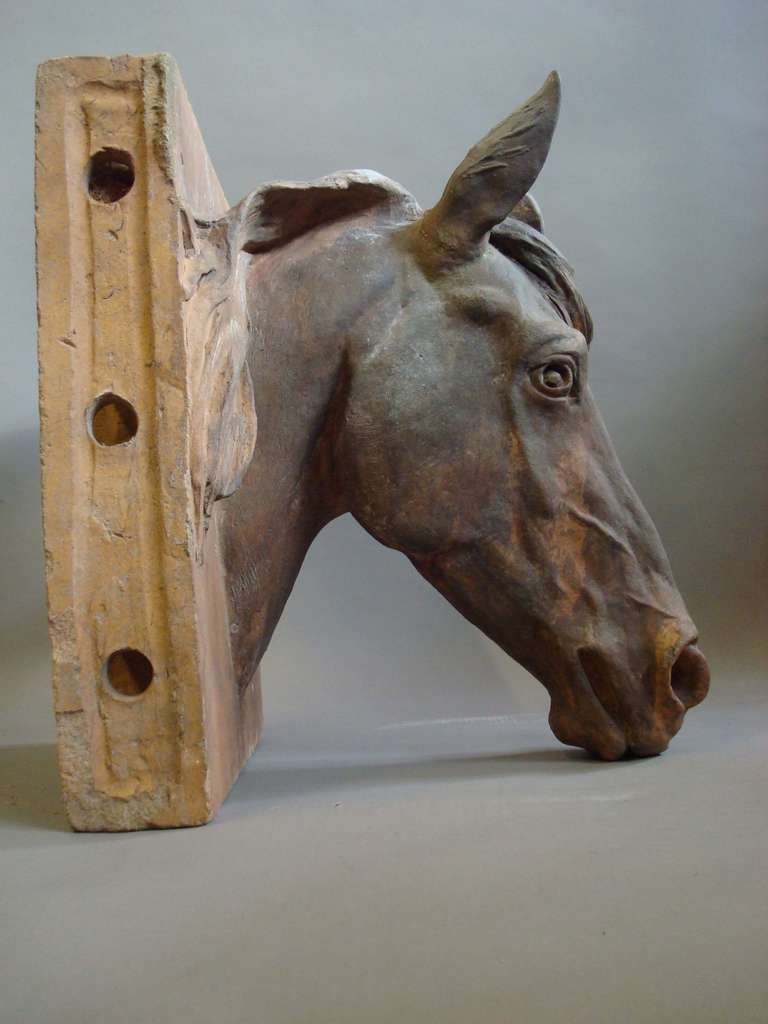 English An Impressive C19th Terracotta Life Size Horses Head For Sale