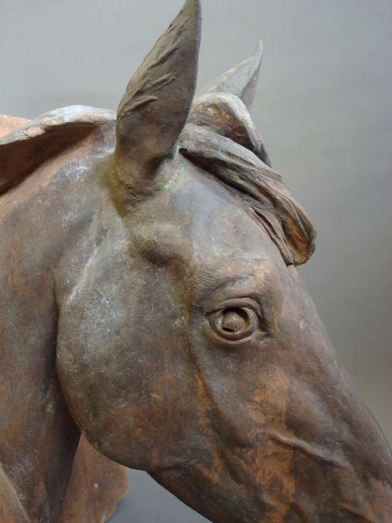 19th Century An Impressive C19th Terracotta Life Size Horses Head For Sale