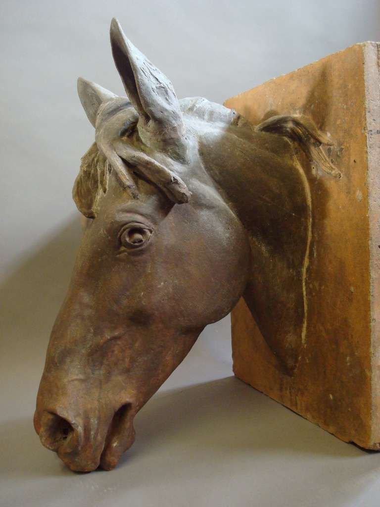 An Impressive C19th Terracotta Life Size Horses Head For Sale 1