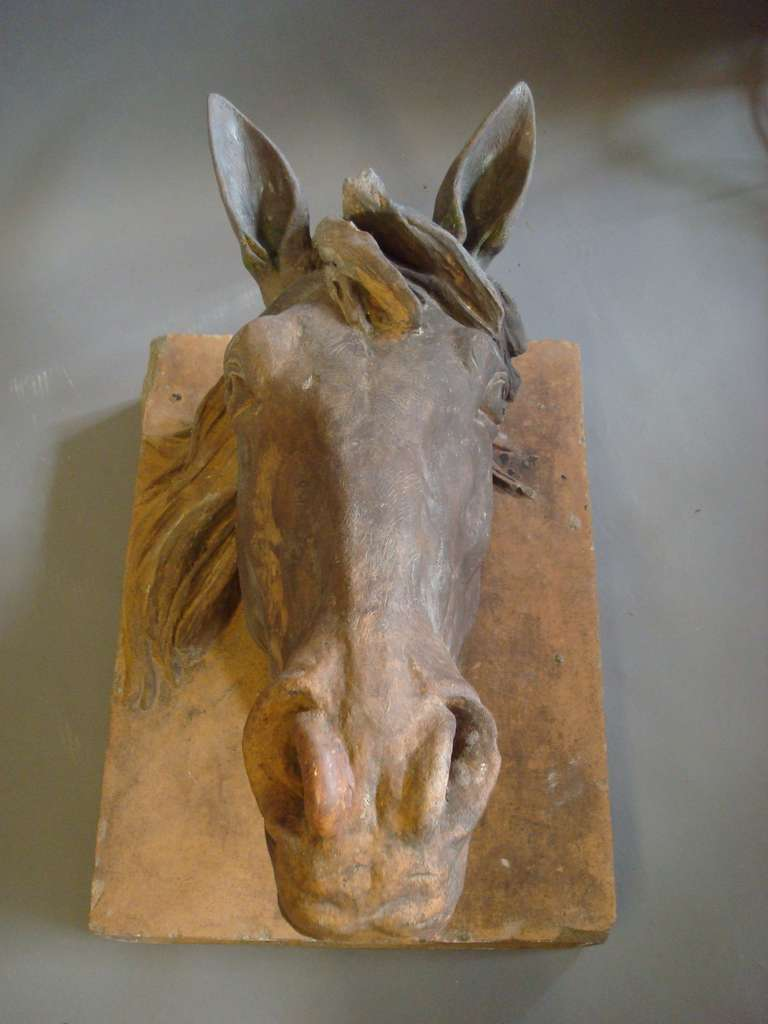 An Impressive C19th Terracotta Life Size Horses Head For Sale 3
