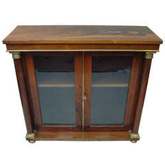 A Good Regency Rosewood and Brass Side Cabinet of Small Proportions
