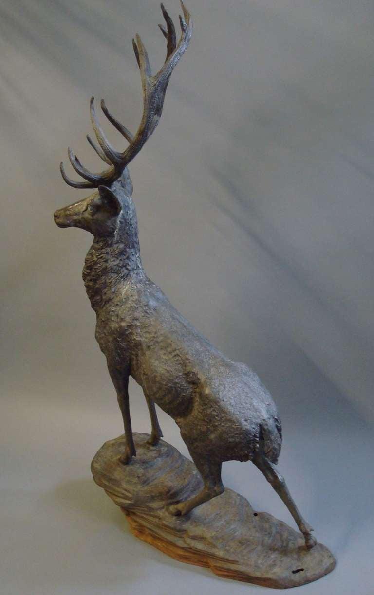 Impressive 'Life Size' 19th Century Bronze Stag 10