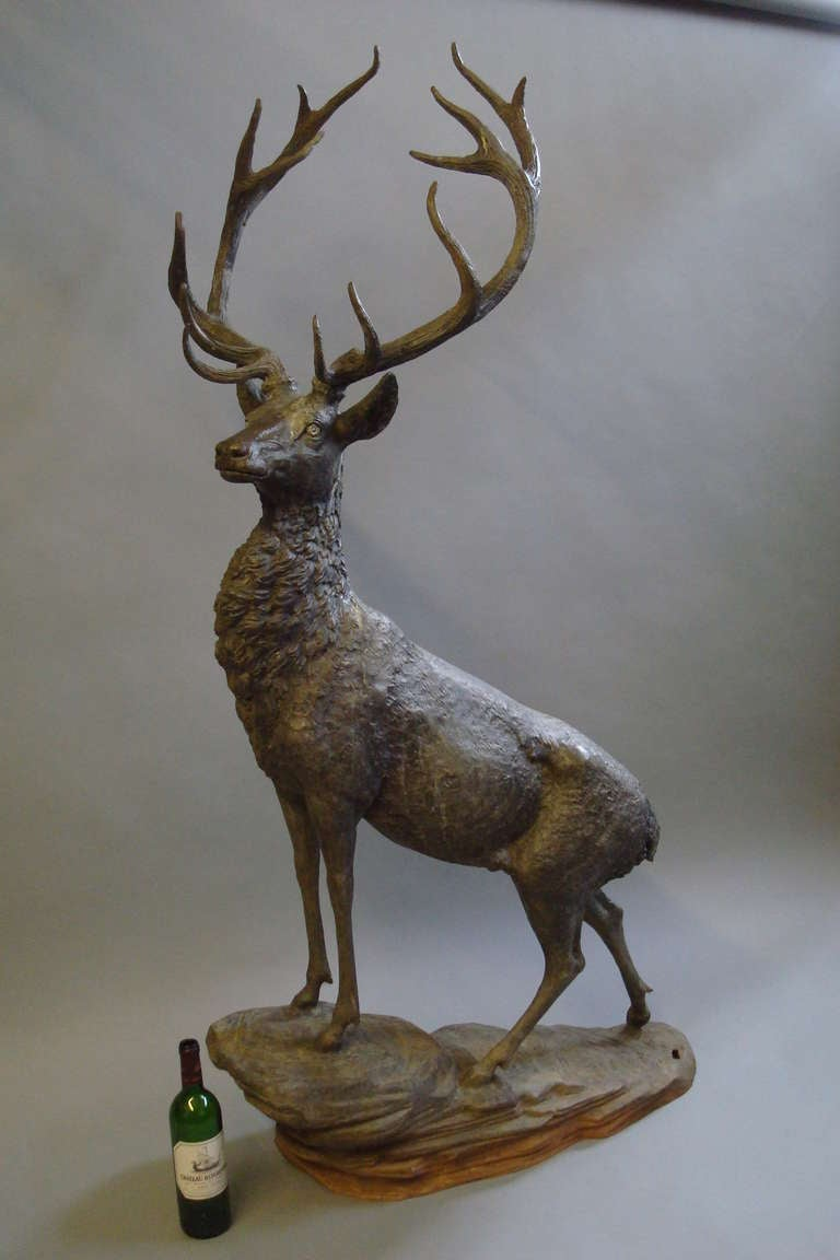 Impressive 'Life Size' 19th Century Bronze Stag 3