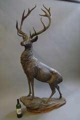 Impressive 'Life Size' 19th Century Bronze Stag image 3
