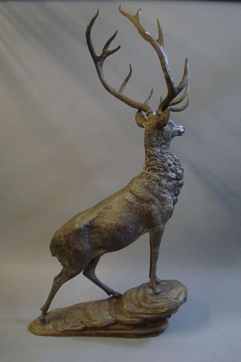 Impressive 'Life Size' 19th Century Bronze Stag 9