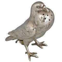 Victorian Fancy Pigeon Pepper