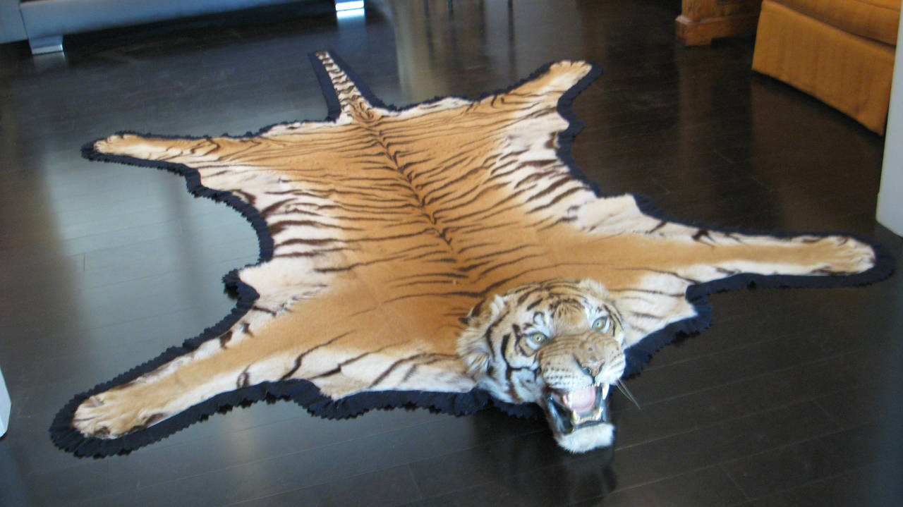 Antique Registered Taxidermy Tiger Rug Prior To Endangered