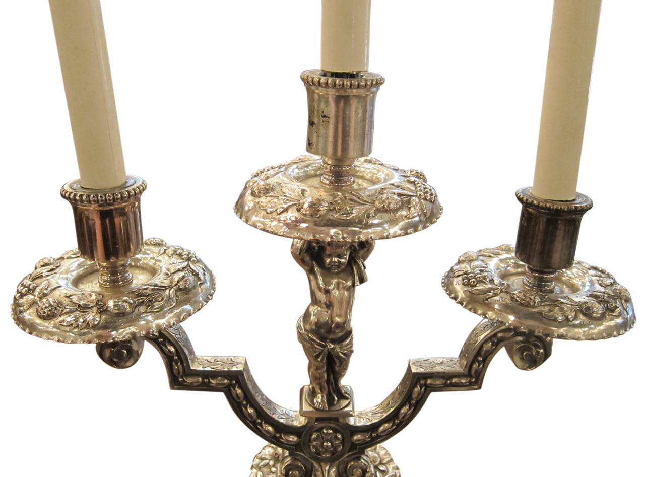 Pair of Silvered Bronze Table Candelabrum with Opposing ...