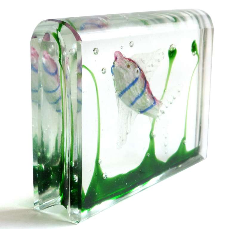 cenedese murano pink blue stripe fish aquarium block. Black Bedroom Furniture Sets. Home Design Ideas