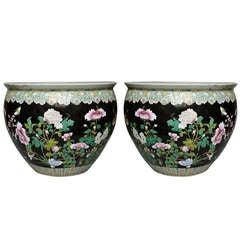 Pair of Famille Verte Porcelain Jardinieres, circa 1970