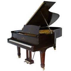 "Steinway Grand Piano Model ""B"" 6' 10"" c1887"