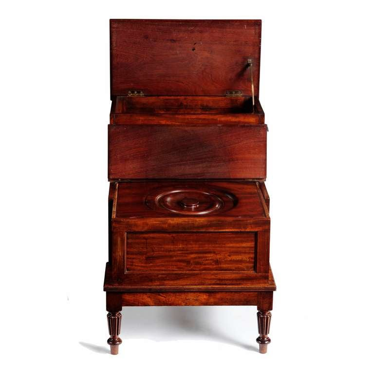 Regency Mahogany Bed Steps by Gillows of Lancaster 4