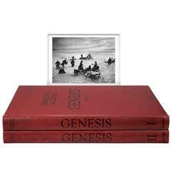 Sebastião Salgado: GENESIS, Art Edition B