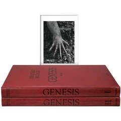 Sebastião Salgado: GENESIS, Art Edition D