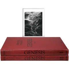 Sebastião Salgado: GENESIS, Art Edition E
