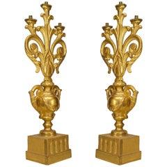 A Fine Pair of Italian Rococo Gilt Wood Candelabras