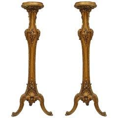 Pair of Louis XV Style Gilt Pedestals