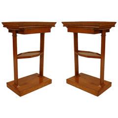 Pair of 19th Century Austrian Biedermeier Shelved End Tables