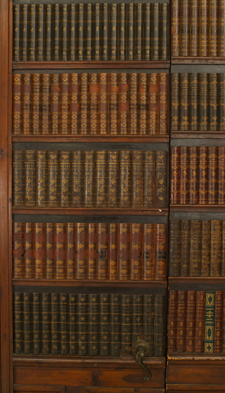 Georgian Pair Of 19th Century English Faux Bookshelf Doors For Sale