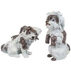 19th c. German Dog Sculpture by Meissen