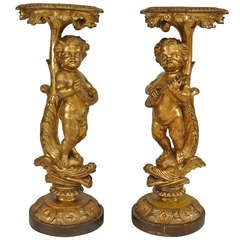 Pair of 19th Century French Louis XV-Style Mythical Gilt Pedestals